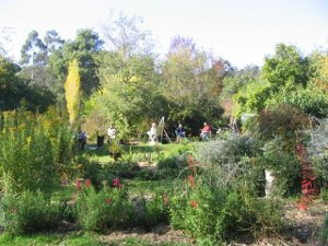 Huonville Auxiliary for Eldercare Garden Walk