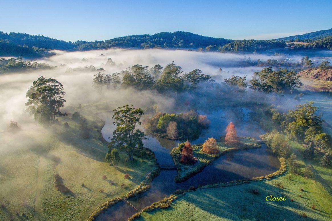 Mist over the Tasmanian Arboretum