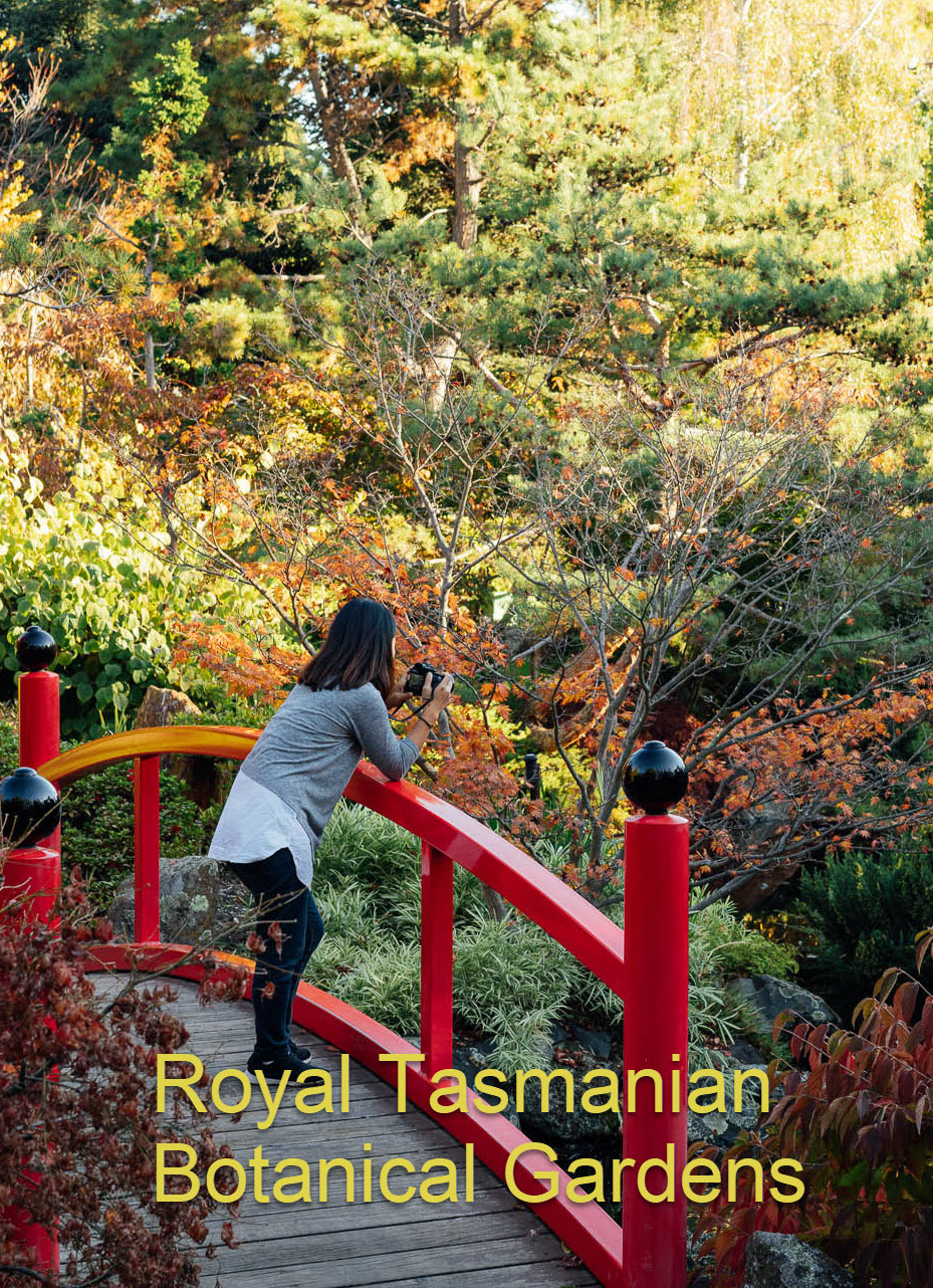 The Tasmanian Community Food Garden